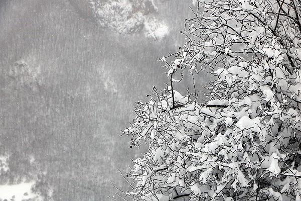 سامانه بارشی جدید در راه است، بارش برف، باران و وزش باد شدید از پنجشنبه